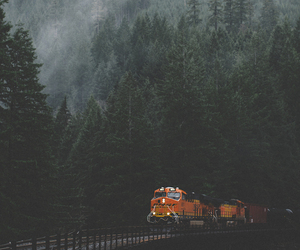 forest, railway, and train image