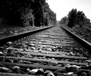 photography, beautiful, and black&white image