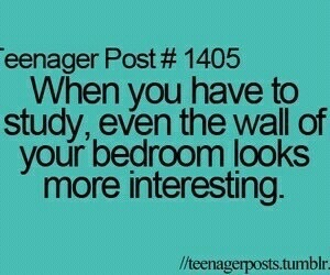 study, teenager post, and funny image