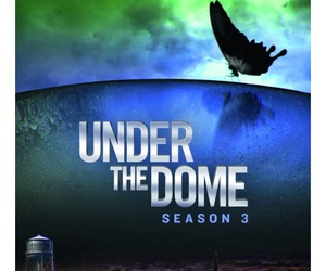 books and under the dome image