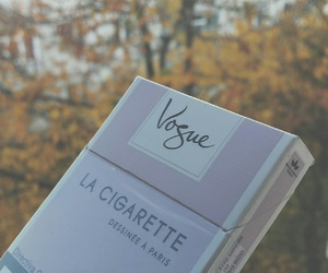 autumn, cigarette, and cigarettes image