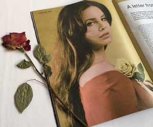 lana del rey, rose, and magazine image