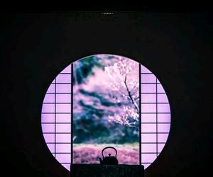 japan, pink, and tea image