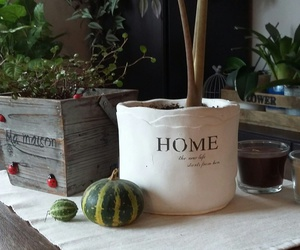 candles, home, and plants image