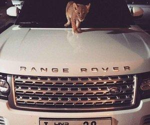 car, range rover, and Dubai image