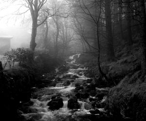 black and white, fear, and river image