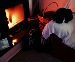 cali, fireplace, and cat image