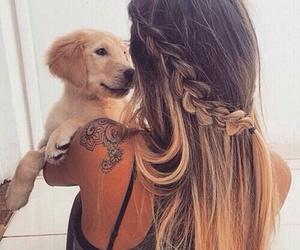 dog, hair, and girl image