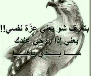 leave me, عزة نفس, and love image