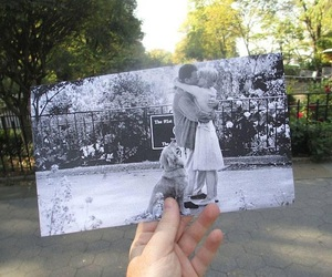 love, kiss, and photography image