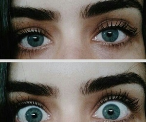 eyes, eyebrows, and blue image