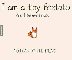 fox and foxtato image
