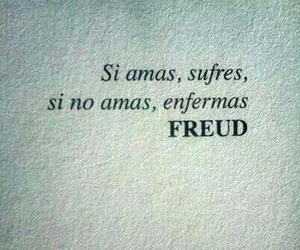 love, frases, and freud image