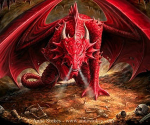 dragon and red image