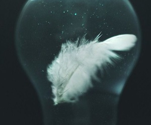 feather, grunge, and indie image