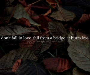 quote, hurt, and love image