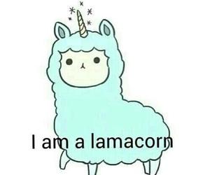 lamacorn, unicorn, and lama image