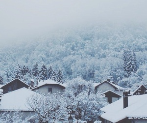beautiful, blue, and cosy image