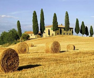 italy, Tuscany, and italia image