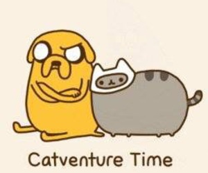 adventure time, pusheen, and cat image