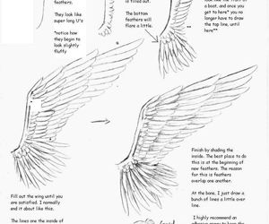 wings, drawing, and tutorial image