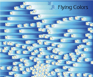 blue, flying colors, and colors image