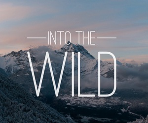 into the wild, mountain, and movie image
