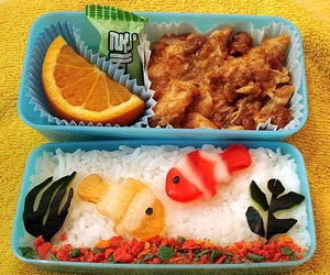 bento, food, and aquarium image