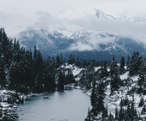 nature, winter, and one direction image