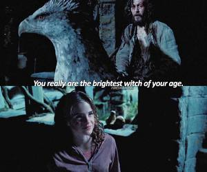 harry potter, hermione granger, and sirius black image