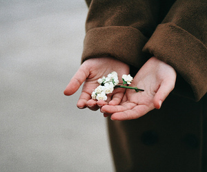 50mm, hands, and portrait image