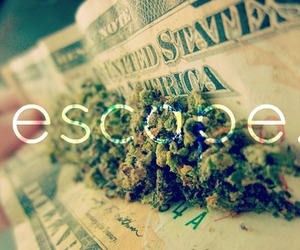 weed, escape, and marijuana image