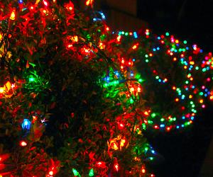 christmas, light, and christmas lights image