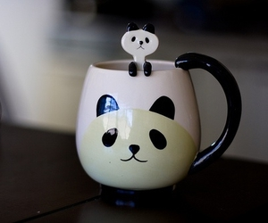 panda, cute, and cup image