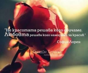 Image by Yanina Radichkova