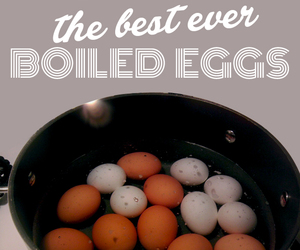 how to do boiled eggs and how to do runny eggs image