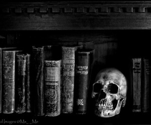 black and white, skull, and book image