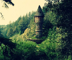 castle, forest, and green image