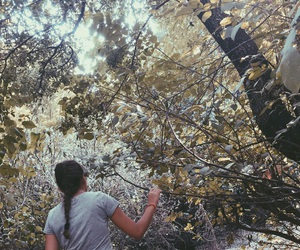 adventure, grunge, and trees image
