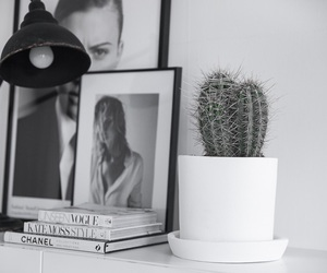 black and white, cactus, and chanel image
