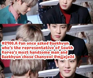 exo, kpop, and kpop facts image