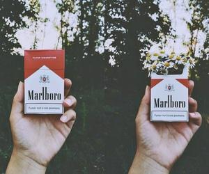 flowers, cigarette, and marlboro image