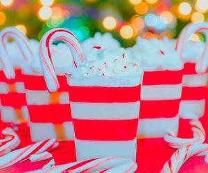 beautiful, christmas, and food image