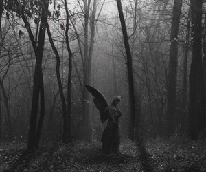 angel, forest, and dark image