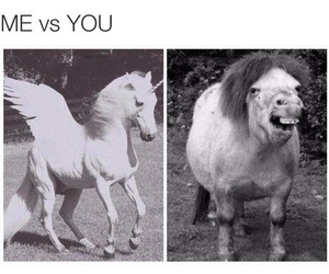 funny, unicorn, and me image