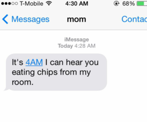 mom, funny, and chips image