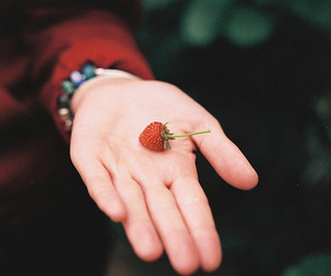 strawberry, vintage, and hand image