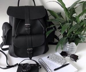 black, bag, and plants image
