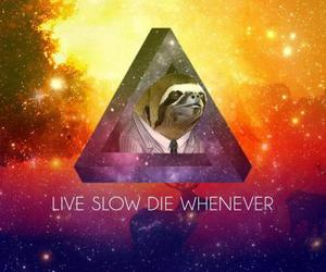 abstract, retro, and sloths image