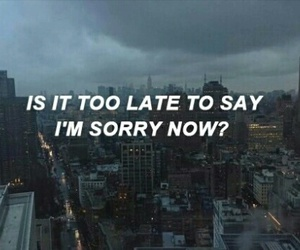 sorry, justin bieber, and quotes image